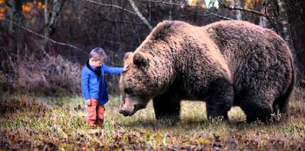 Ein Junge, der sich im Wald verirrt hatte, verbrachte zwei Tage in der Gesellschaft eines Bären
