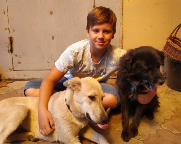 Um den Hund zu heilen, stellte der Junge seine eigene Limonade her und verkaufte sie