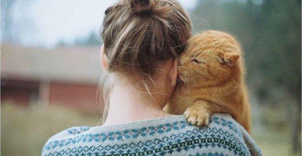 Katzenliebe: Kater Jarvis vergöttert sein Herrchen und verabscheut seine Frau ganz offen