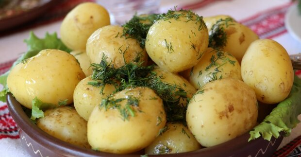 Eine 35-jährige Frau erkannte, dass sie ihr ganzes Leben lang Kartoffeln falsch zubereitet hatte