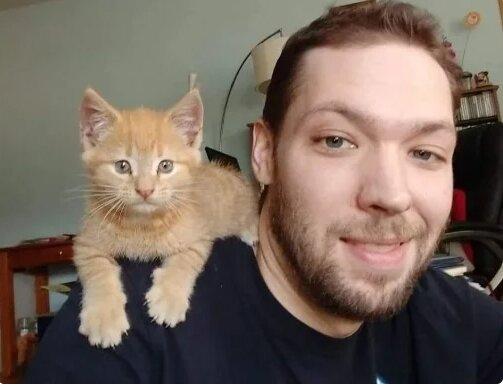 Das streunende Kätzchen beschloss, bei einem Mann zu bleiben, der freundlich zu ihm war