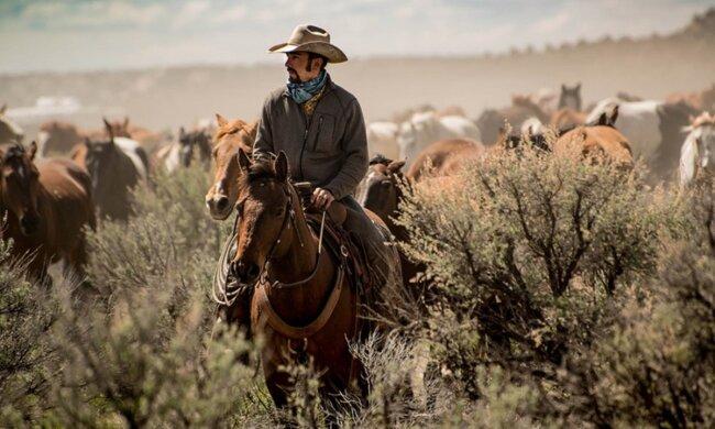 Wegen der Krankheit eines Mannes: Wie ist der legendäre Cowboyhut entstanden
