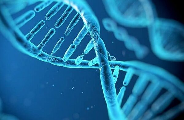 Tochter nahm DNA und fand heraus, wer ihr wirklicher Vater ist: Mutter weigert sich, zu gestehen