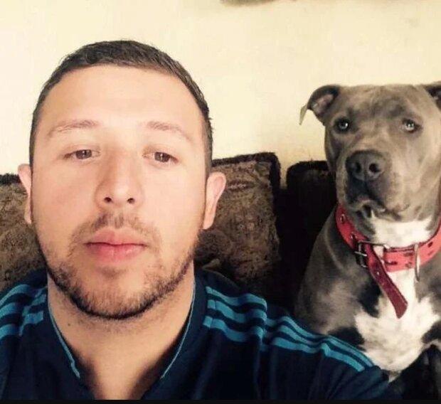 """Pitbull hat etwas """"Menschliches"""" getan und seine Hundehütte für eine streunende und schwangere Katze aufgegeben"""