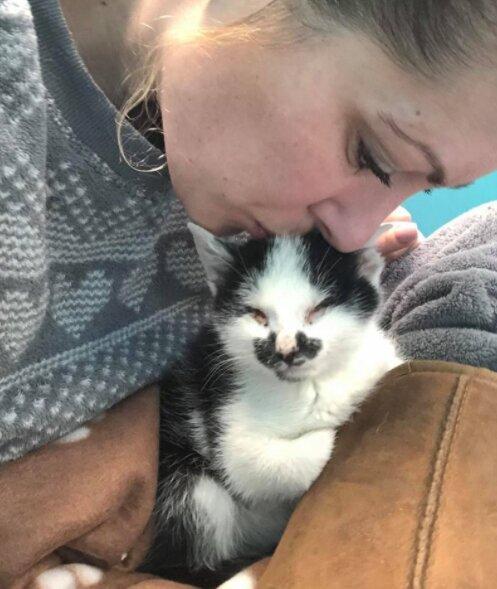 Im Tierheim hörte eine Frau ein schwaches Kätzchen weinen und nahm es mit zu sich