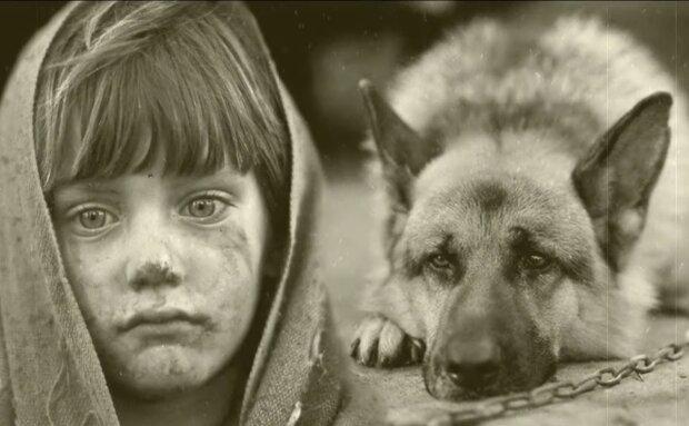 Der Hund, der nicht gut hören und sehen konnte, hielt das vermisste Mädchen die ganze Nacht warm und brachte am Morgen Hilfe